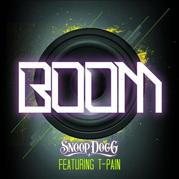 Snoop Dogg (ft. T-Pain) – Boom Instrumental